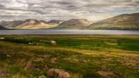 Looking into Dýrafjörður from Mýrar and Þingeyri in the background in Westfjords of Iceland photos by karl magnusson