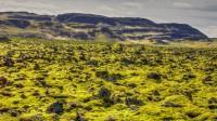 Diffrent landscape in Norðurárdalur, Borgarfjörður Western Iceland photo by karl magnusson